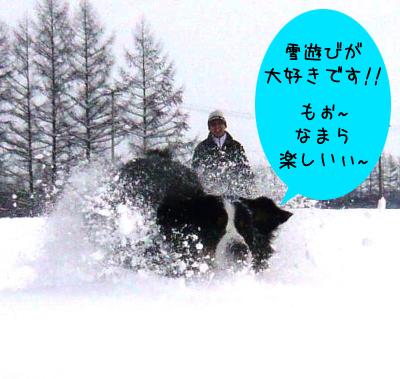 20091229_002.jpg
