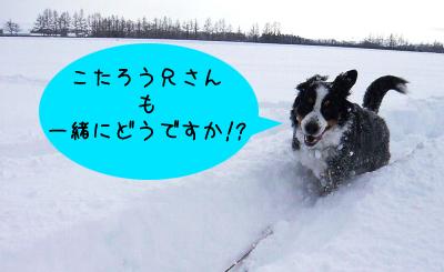 20091229_004.jpg