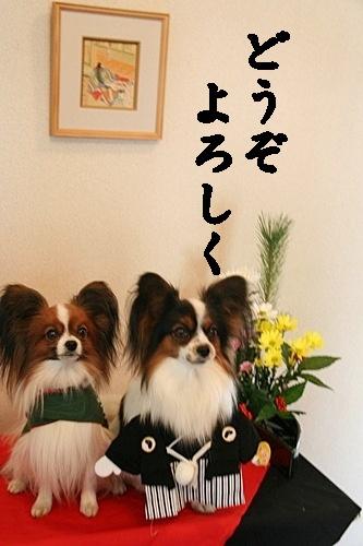 20100101_9999_20.jpg