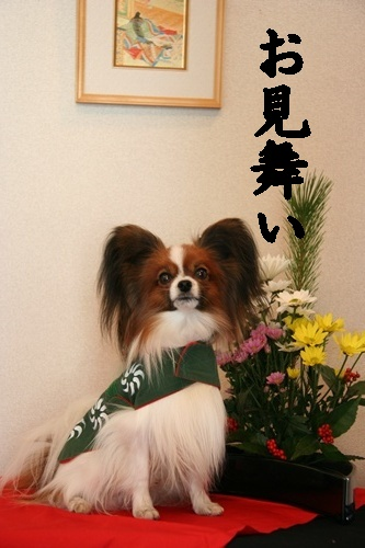 20100101_9999_4.jpg