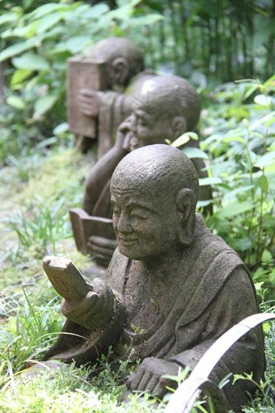紫陽花寺 4
