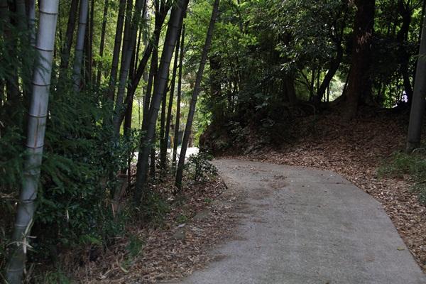 散歩道入口2