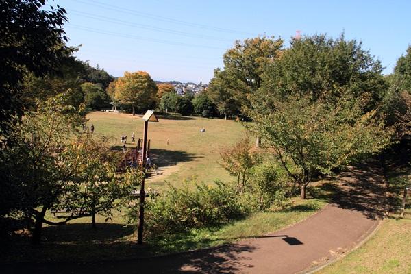ふるさと公園 1