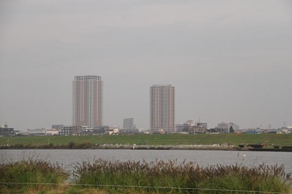 篠崎緑地2
