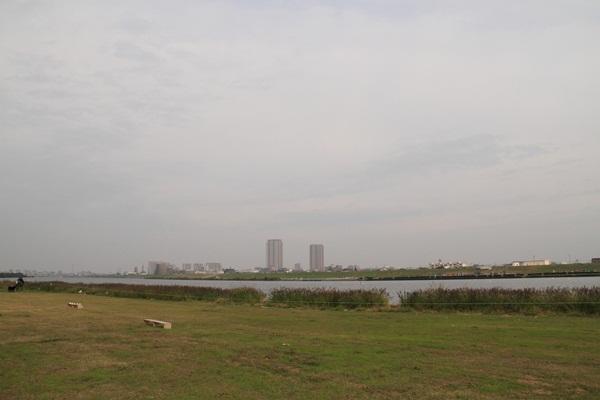 篠崎緑地 1