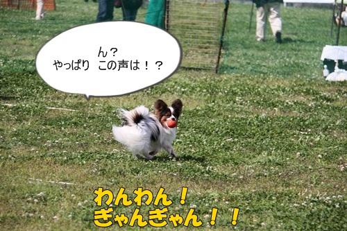 IMG_7462.jpg