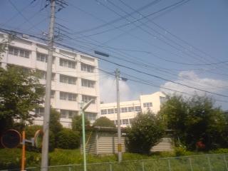 20100825-10.jpg