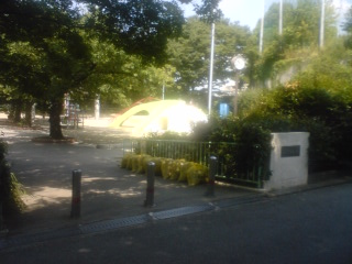 20100825-12.jpg