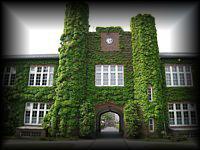K281立教大学