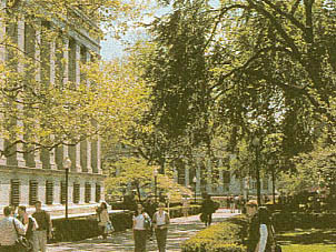 U11-Columbia University