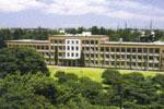 K375国際基督教大学