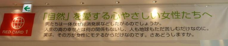 P1070012.jpg