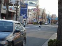 DSC03856m.jpg