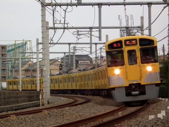 20101017_10.jpg