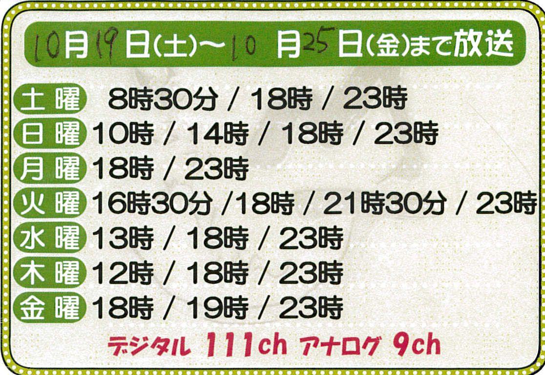 20131016JCV_kensin_VTR.jpg