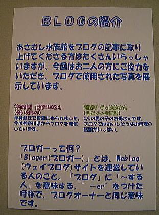 45_20100203000128.jpg