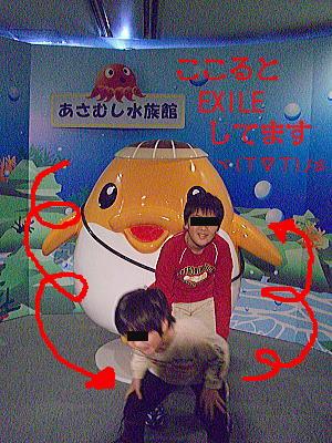 46_20100203001421.jpg