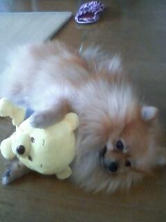 pooh&ココ