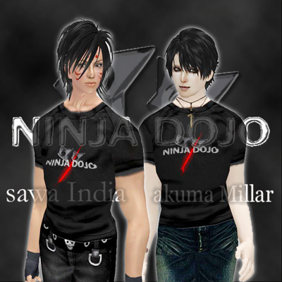 ninja110820.jpg