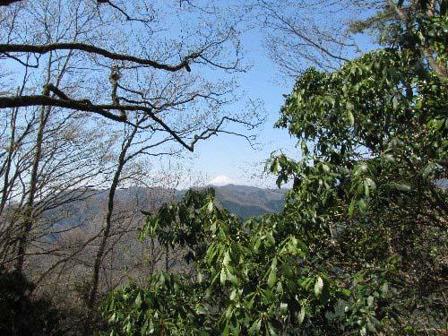 5 富士山見えた