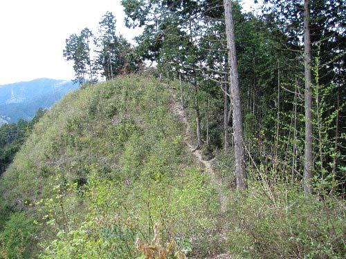 b 城山への道