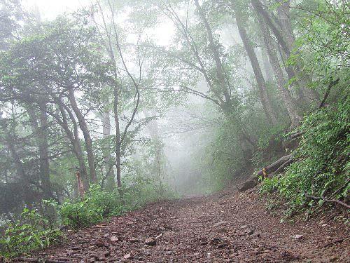 1大塚山へ