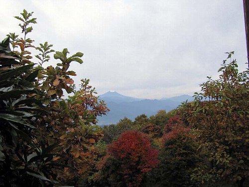 9 朝の富士