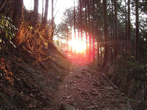 4 朝 登り道