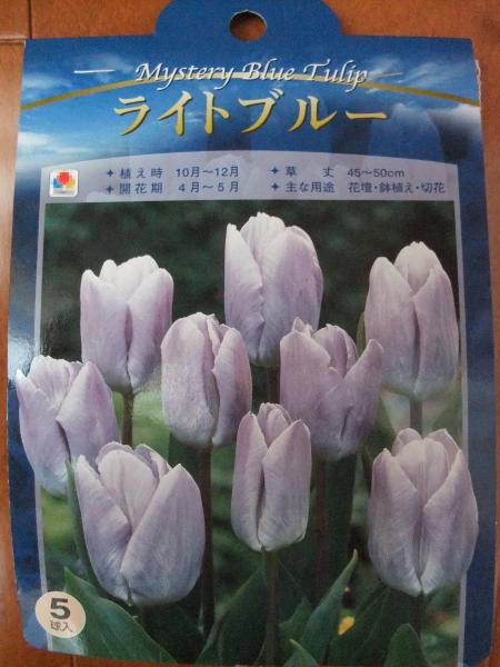 繧ュ繝」繝ウ繝・ぅ繝励Μ繝ウ繧ケ_convert_20101012171816