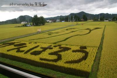 201109gambarou-tohoku.jpg