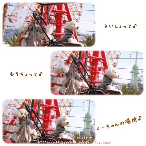 10_20110109212706.jpeg