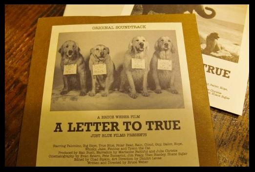 トゥルーへの手紙。