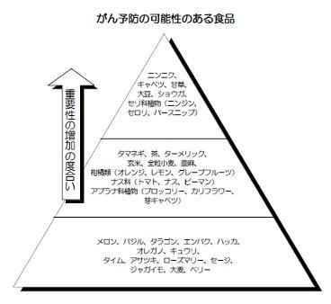 デザイナーズフーズピラミッド
