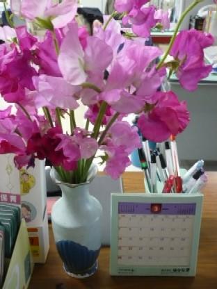 ブログ 春
