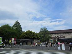 IMG_0117-syaraku.jpg