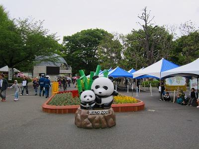 IMG_0221-uenopanda.jpg