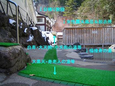 IMG_4237-meotobutimm.jpg