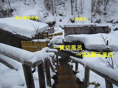IMG_7860m-kaniyu.jpg
