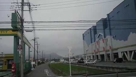 P1000116.jpg