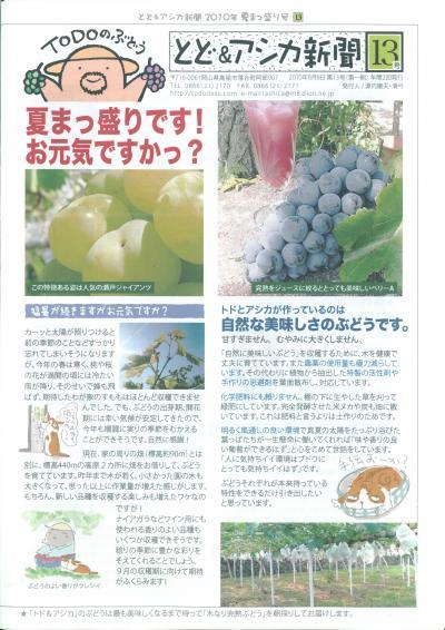 トド&アシカ新聞