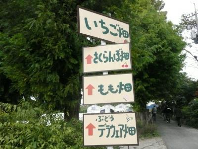 広島視察?