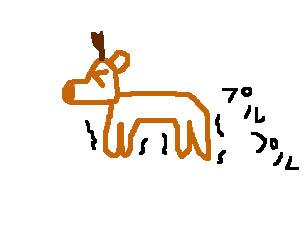 生まれたての小鹿
