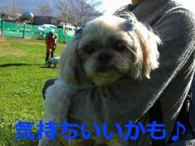 025_20091115195604.jpg