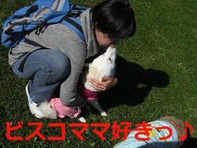 026_20091115195604.jpg