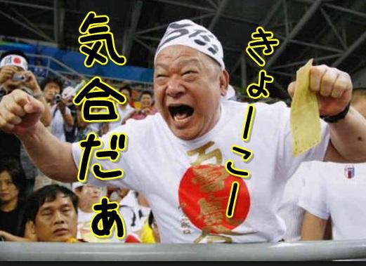 Baidu IME_2013-8-31_11-14-17
