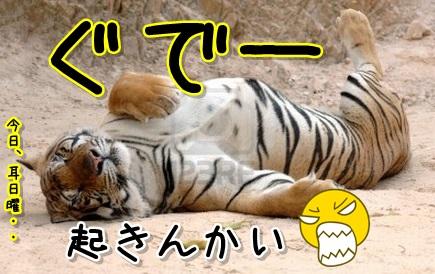 Baidu IME_2013-9-15_21-29-53