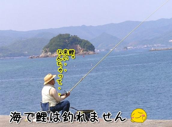 Baidu IME_2013-9-17_9-24-21