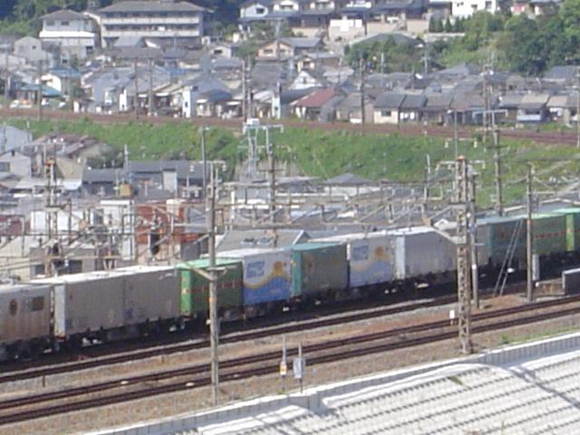 DSC05636.jpg
