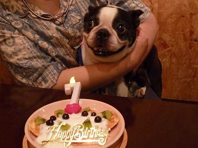 ミル姐さん/Birthday Girl