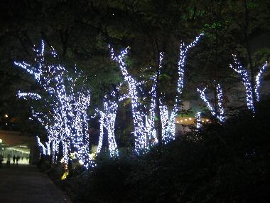 新宿中央通りイルイネーションH21 12.6